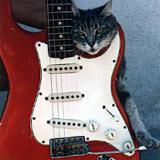 1965 Candy Apple Red Strat